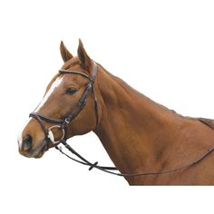 The Plain Raised Elite Jumper or Event Bridle comes with your standard plain raised brow, the extra brow features Bronze crystals. Bridle comes with web reins with