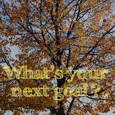 New season new goals? I dont personally need to have clear goals but its good to ask myself the question and think about it from time to time. Ask Me, Self Development, Health Tips, Neon Signs, Hacks, Goals, Seasons, This Or That Questions, Life