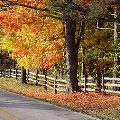 107 Best Country Fence Images Nature Beautiful Places