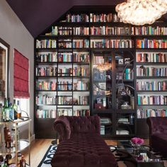 Give me a home library like this and I will never watch television again..