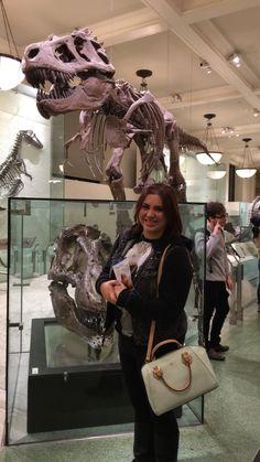 American Museum of Natural History December 13, 2015