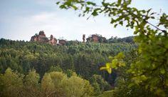Burgen & Felsen - Pfalz & Elsass - Hotel Pfalzblick