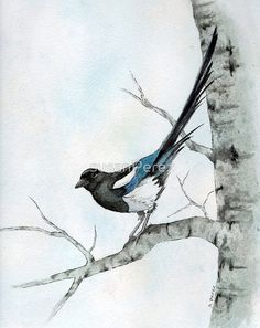 The Lookout Gouache Painting, Watercolor Bird, Canadian Artists, Animal Drawings, Online Art Gallery, Montreal Quebec, Framed Prints, Canvas Prints, Watercolours