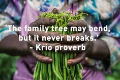 At Farm Africa, we believe that every day should be World Food Day. One in four people in sub-Saharan Africa still goes to bed hungry; Food is not only crucial for… Going To Bed Hungry, International Development, Health And Wellbeing, People Around The World, Helping People, Believe, Africa, Food, Essen
