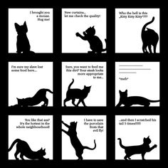 Silly Kitten Art Print