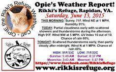 OPIE'S WEATHER REPORT! - Rikki's Refuge, Rapidan, VA. - SATURDAY, JUNE 13, 2015 -  www.rikkisrefuge.org