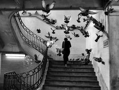Henri Cartier Bresson photography stairs birds