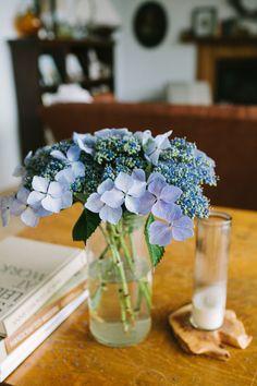 single hydrangea flowers / woodnote photography for kinfolk