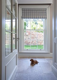 Roman shade. Clean and fresh in a checked pattern. Puppy does not come with the window treatment, lol.