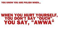 Polish Pride Polish People, Me Quotes, Funny Quotes, Polish Memes, Polish Language, Funny Mems, You Dont Say, Polish Recipes, Polish Girls