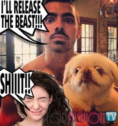 #JoeJonas On #TWITTER WAR with #Lorde After Her DISSING #SelenaGomez – READ!!!
