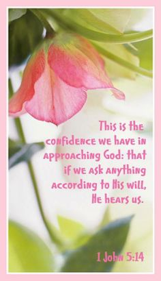 This is Our Confidence........Jesus! Biblical Quotes, Bible Verses Quotes, Bible Scriptures, Faith Quotes, Spiritual Quotes, Healing Scriptures, 1 John, Images Bible, Scripture Pictures
