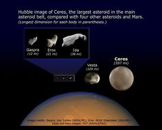 Comparison of Asteroid Sizes- Hubble image of Ceres the largest asteroid in the Mi Images, Asteroid Belt, Galaxy Makeup, Galaxy Planets, Dwarf Planet, Computer Basics, Hubble Images, Andromeda Galaxy, Hubble Space Telescope