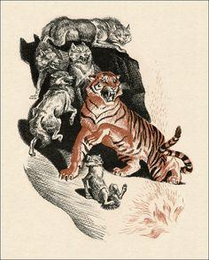 The Jungle Book by Rudyard Kipling. Mowgli. Illustrator Sergey Artyushenko, 1986.