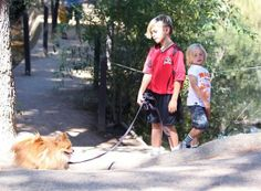 Kingston Rossdale - Kingston & Zuma On A Hike With Their Nanny