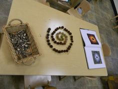 """Arranged gum tree """"spikey balls"""" with Andy Goldsworthy artwork provocation"""