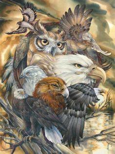 Bergsma Gallery Press :: Products :: Easel Back Tiles :: Birds :: Eagles :: Sky Kings - Easel Back Tile Animal Spirit Guides, Spirit Animal, Native Indian, Native Art, American Indian Art, Native American Indians, Tattoo Indien, Aigle Animal, Graffiti Kunst