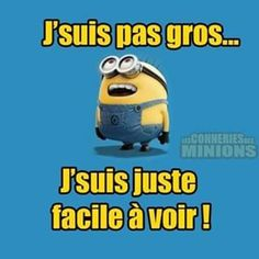"""I'm not fat I'm just easy to see"" Minion Humour, French Expressions, French Quotes, Minions Quotes, Despicable Me, Wtf Funny, Funny Photos, Laugh Out Loud, Haha"