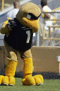 Best Mascots of March Madness 2012-  27. Southern Miss