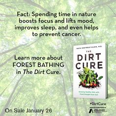 Fact: Spending time in nature boosts focus and lifts mood, improves sleep, and even helps to prevent cancer. Learn more about forest bathing in The Dirt Cure by Maya Shetreat-Klein, MD available January 26, 2016.