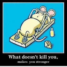 Always take your cue from this tenacious little mouse. #strength #hope #pain #quotes