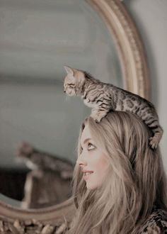 Amanda Seyfried - I love cats, chocolate, and tea parties. Cute Kittens, Cats And Kittens, Crazy Cat Lady, Crazy Cats, Celebrities With Cats, Photo Chat, Cat People, I Love Cats, Belle Photo