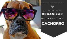 22 ideias para organizar os itens do seu cachorro