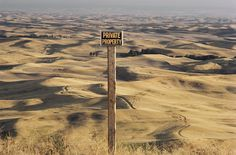 Overview of rolling, dune-like wheatfields extending into the horizon in Steptoe Butte, Washington, May 1980.Photograph by Robert Madden, National Geographic