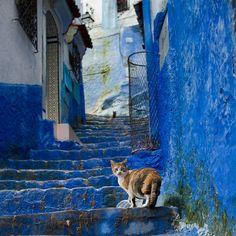 世界遺産 シャウエン シャウエンの絶景写真画像  モロッコ