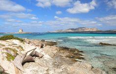 Spiaggia La Pelosa, Sardinia / via mamasaidbecool.pl