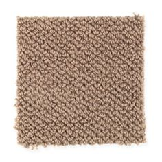 Heartland Melody style carpet in Fox Trot color, available wide, constructed with Mohawk EverStrand BCF carpet fiber. Mohawk Flooring, Harp, Heartland, Carpets, Rugs, Fox, Samba, Color, Spice