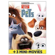 The Secret Life of Pets (DVD) : Target