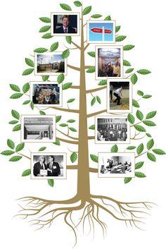 tree timeline