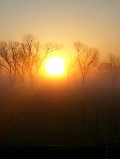 Sunrise Holiday Sayings, Sunrise, Celestial, Outdoor, Outdoors, Outdoor Games, The Great Outdoors, Sunrises