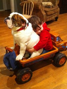 BFF's Brody & Winston go for a ride in the Mater wagon!