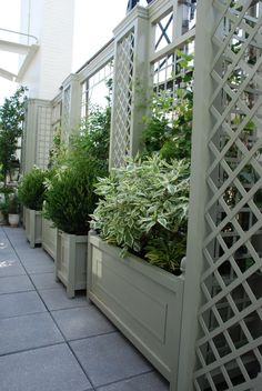 Aluminum treillage and planters transformed this balcony to bring life to the space. See how Accents of France can transform your business or home with custom designed trellis and planters. Garden Arbor, Garden Trellis, Garden Gates, Trellis Fence, Pergola Patio, Backyard Landscaping, Pergola Kits, Landscape Design, Garden Design