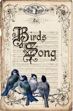 birds_song collage art digital