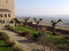 Garten im Kloster Hildegard von Bingen