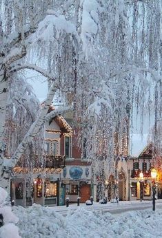 The first snows with the leaves on the trees are so beautiful Leavenworth, Washington, United States Winter Wonderland Christmas, Cozy Christmas, Christmas Weather, Christmas In The City, Christmas Fireplace, Christmas Markets, Christmas Lights, Christmas Holidays, Leavenworth Washington