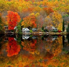 Cabins by the lake - total internal reflection, too! Physics and water and light and colour!