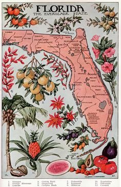 "This illustration is from the public domain book ""The Home and School Reference Work"" Volume III by The Home and School Education Society, H. M. Dixon, President and Managing Editor. The book was published in 1917 by The Home and School Education Society. This copyright free illustration of the state of florida includes a map, palm tree, fruit and flowers. It appears between pages 1046 and 1047."