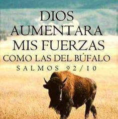 Amén.... Así será !!!