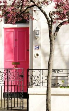 Luscious pink front door white house blossom.jpg