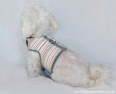 Шлейка для собаки: шьем своими руками York Dog, Dress Patterns, Rings, Clothing, Outfits, Dress Making Patterns, Ring, Jewelry Rings, Outfit Posts