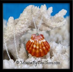 Spectacular deep color in this gorgeous Hawaiian Sunrise Shell! The bright white stripes contrast with the deep hues of orange / red in this 1 1/8 inch pendant which hangs from a sparkling 18 inch Sterling Silver rope chain. A one of a kind design, and as always, made entirely by hand without chemical cleaning of the seashell. This perfectly shaped, pristine Sunrise Shell is just beautiful in every way!