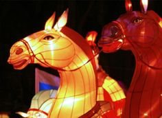 Happy New Year China… The year of the Horse should bring health and prosperity. It is said to be an excellent time to travel, so mingl...