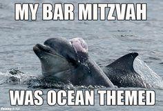 Dolphin Jew lol.