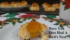 Bird's Nest – A Tast