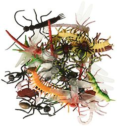 ~ 144 ~ Assorted Realistic Insects / Bugs by Rhode Island...