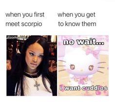 Zodiac Mind Scorpio, Scorpio Funny, Scorpio Traits, Zodiac Funny, Zodiac Signs Astrology, Zodiac Memes, Zodiac Star Signs, Saturn Sign, Zodiac Meanings